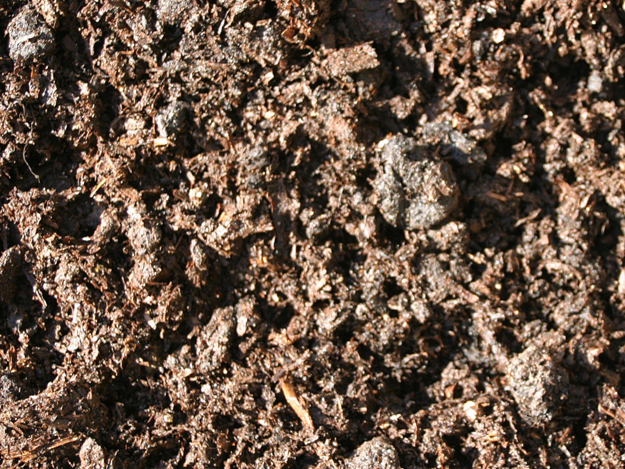 Landscaping materials abacus landscaping design for Mushroom soil